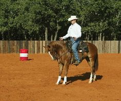 Body control for the barrel racers horse. I'm a believer in Clinton Anderson.