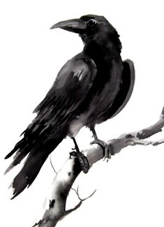 For Ricky.  Crow raven original watercolor painting  9 X 12 by ORIGINALONLY