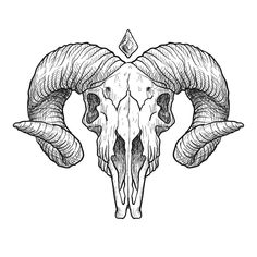 'Paisley Yin Yang Moon' Sticker by SpaghettiFarmer Animal Skull Drawing, Animal Skull Tattoos, Animal Skulls, Tattoo Sketches, Tattoo Drawings, Art Sketches, Cool Skull Drawings, Rosen Tattoo Mann, Widder Tattoos