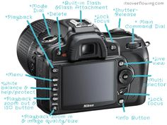 very basics parts of a camera -good to know! for someone just starting out w/Cameras+Buttons