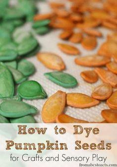 How to Dye Pumpkin Seeds for Crafts and Sensory Play - From ABCs to ACTs