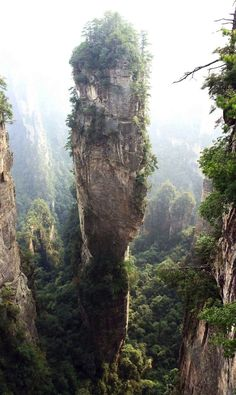 The Southern Sky Columnis located in the Zhangjiajie National Forest Park in China. It's nickname is Avatar Hallelujah Mountain after the floating mountains in the sci-fi movie. (via http://slightlywarped.com/crapfactory/curiosities/2012/february/southern_sky_column.htm )