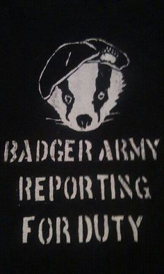 For those who went out and got muddy for the badgers Animals Beautiful, Cute Animals, Hufflepuff Pride, Honey Badger, Revolutions, Woodland Creatures, Fantastic Beasts, Foxes