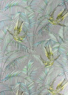 Silver Sunbird Wallpaper - Wallpaper - Matthew Williamson
