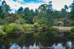 Lightroom Tutorial, Tasmania, Pond, Clouds, Bright, River, Tools, Outdoor, Outdoors