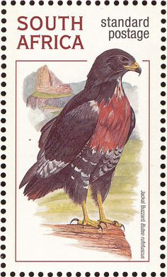 Jackal Buzzard stamps - mainly images - gallery format