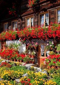 Typical Simmental Valley farmhouse near Erlenbach,Bernese Oberland,Switzerland