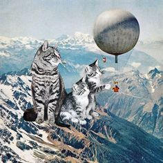 Eugenia Loli Collage - Learning from Experience