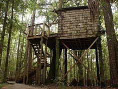 Hostel in the Forest, Brunswick, GA.