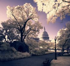 So what is infrared photography? Infrared Photography is capturing invisible light that shows incredible after effects. Dc Travel, Places To Travel, Places To See, Washington Dc, Beautiful World, Beautiful Places, Beautiful Scenery, Cool Pictures, Cool Photos