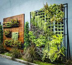 Pflanzenwand Selber Bauen pflanzenwand selber bauen rote eingebaute blumentöpfe aus kunststoff