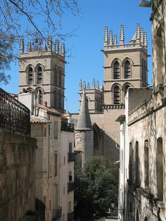 """""""Cathedral St. Pierre, Montpellier, France"""""""