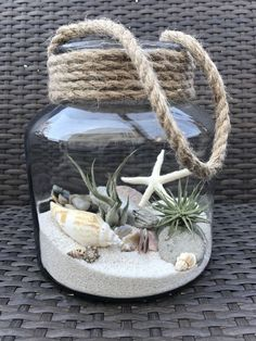 Luft Pflanzen DIY Ideen In Best Plants DIY Ideas And Inspiration For You The post Beste 70 + Air Plants DIY Ideen und Inspiration für Sie appeared first on Home Dekoration. Seashell Art, Seashell Crafts, Beach Crafts, Diy And Crafts, Seashell Projects, Seashell Display, Seashell Wind Chimes, Beach Themed Crafts, Mason Jar Crafts