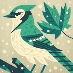 Illustration & Painting / Owen Davey | BLDGWLF