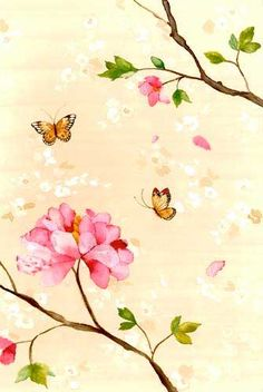 Chris Chun ✿ Flowers ✿ Butterfly ✿ Floral ✿ Garden ✿ Pink ✿ #Illustration