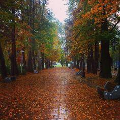 Autumn / Rasht, Guilan, Iran - Mohtasham Garden.