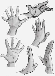 Hand reference with shade