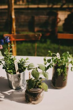 Planning an eco-friendly wedding that will be kind to nature and the environment? Then you're going to love these sustainable, eco-friendly and low/ zero waste wedding hacks. Learn how to embrace zero-waste wedding principles of re-use by choosing wedding Our Wedding Day, Wedding Tips, Wedding Reception, Wedding Planning, Eco Wedding Ideas, Wedding Table, Wedding Hacks, Wedding Decor, Sustainable Wedding