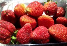 zaycon strawberries 3