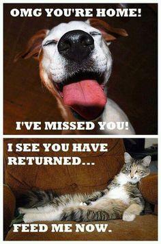 We still love them both.