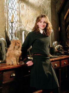 Pattenrond est le chat d'Hermione, la camarade de Harry Potter à Poudlar, l'école des sorciers, dans la version française des romans de  J. K. Rowling et des films qui en sont tirés.