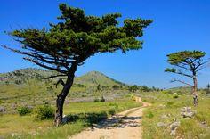 Ein Urlaub für Senioren hat so einiges zu bieten... Traumhafte Landschaften beispielsweise :-) Wer auch einen Urlaub speziell für Senioren sucht: http://www.galavital.de