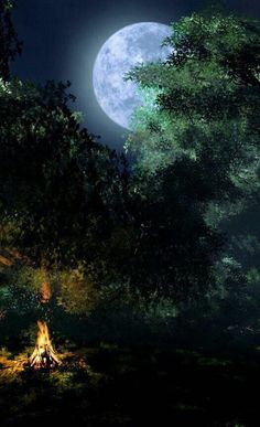 Moon ft. a campfire on the forest