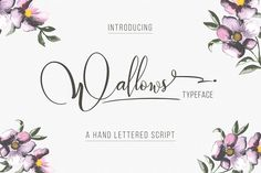 wallows is a beatiful handwriting script. Graphic Design resources | templates | Inspiration | Graphic Design products| ideas | social media | small businesses | fonts