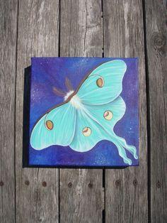 Luna Moth Original Painting 8 x 8 by SandyLandStudio on Etsy