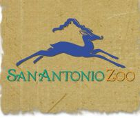 San Antonio Zoo is quick 20 minute drive away and a must see for families. Located in Breckenridge Park with many options to choose from! San Antonio Zoo, San Antonio River, San Antonio Vacation, Texas Bucket List, Texas Vacations, Fun Places To Go, Texas Pride, Fun Activities For Kids, Day Trips