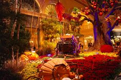 Halloween at the Bellagio