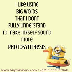 Home Page | Minion Quotes | I like using big words… #funny #quote # ...