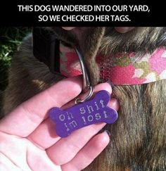 Love this dog tag!
