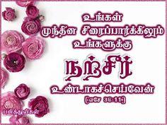 Tamil bible verse, rose