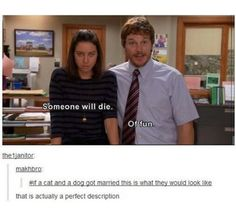 Parks and Recreation  my fav show!