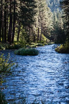 Metolius River, Oregon | Flickr - Photo Sharing!