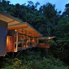 Elegant Modernes Haus Im Wald Baumhaus Mmp Architects Australien