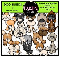 This is a selection of popular dog breeds. The breeds included in this set are: akita, bloodhound, border collie, boston terrier, chihuahua, english bulldog, jack russell terrier, papillon, pug, sharpei, sheepdog and weimeraner.24 images (12 in color and the same 12 in B&W)This set is also available (at a discount) as part of the DOG BREEDS CLIP ART MEGA BUNDLEThis set contains all of the images shown.Images saved at 300dpi in PNG files.For personal or commercial use.Download preview for ...