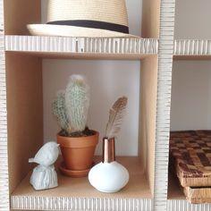 Cardboard cupboard. Cactus, copper, polspotten, bird, richmond green. At my home.