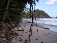 Grand Tacarib Bay