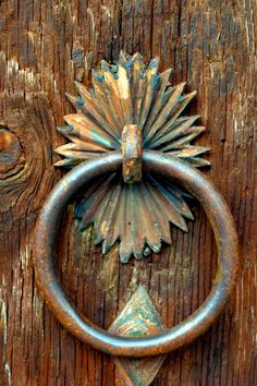 The knocker is interesting, but the wood of the door is fascinating.  (Note the knot.)