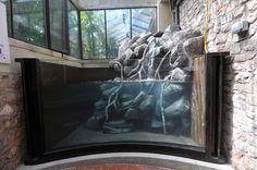 aquarium water fall