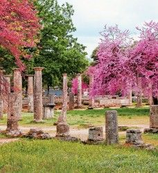 Ancient Olympia, is known for having been the site of the Olympic Games in classical times, the most famous games in history.The Olympic Games were held every four years.The first Olympic Games were in honor of Zeus. Most Beautiful Beaches, Beautiful Places, Places Around The World, Around The Worlds, Ancient Beauty, Ancient Greece, Trip Planning, Cool Photos, Amazing Photos