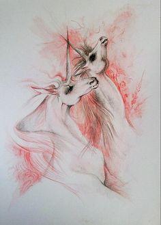 Unicorns illustration