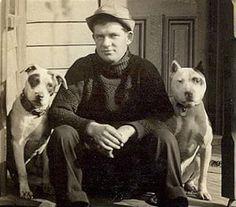 vintage pitbull pics | vintage pit bull