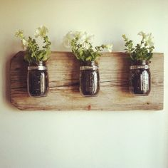 Mason Jar Wall Planter.  I might ask my wonderful husband to make this for me for my birthday, and hang it up above our blank wall over the kitchen sink and put ivy or air plants in it.  Air plants would be a nice reminder of all our hikes in the hammocks of Florida.