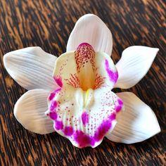 die besten 25 orchidee kaufen ideen auf pinterest orchideen online kaufen kunstblumen im. Black Bedroom Furniture Sets. Home Design Ideas