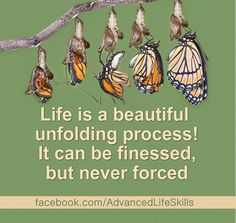 wise words about how life unfolds