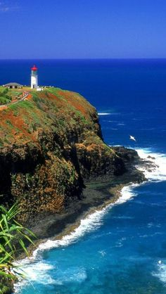 Kilauea Lighthouse, #Kauai #Hawaii   I was here its just breathe taking