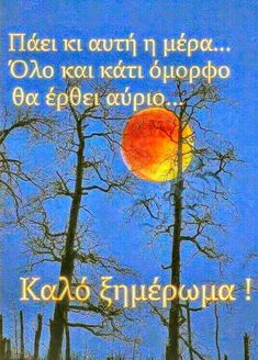 Good Afternoon, Good Morning, Greek Quotes, Good Night, Pictures, Pink Roses, Messages, Quotes, Buen Dia